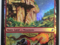 Mountain/Mudbutton Torchrunner
